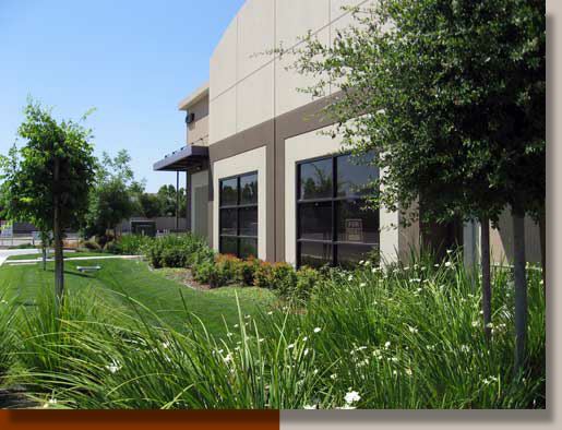 Bio-swale at Technology Business Park in Livermore