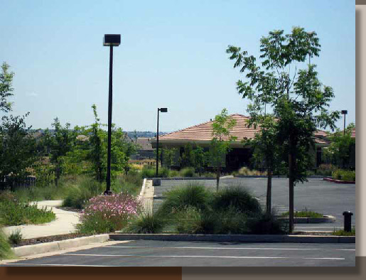 Lights Amp Trees Landscape Resources For Electrical Engineers