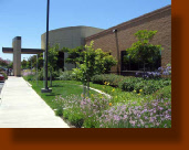 Medical Office Landscaping